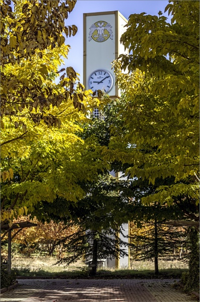 Fall on Campus Grounds by nonur