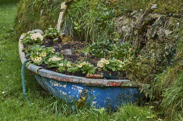 I never promised you a rose garden ... by Meditator