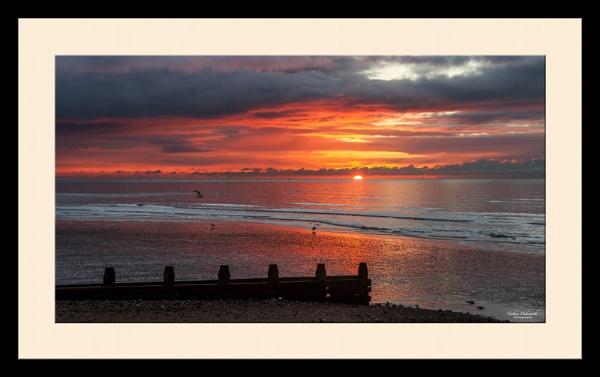 Sunrise & Seaguls by NDODS