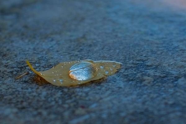 After rain by Split