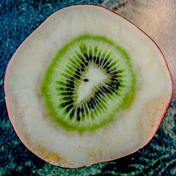 Apple-Kiwi by Marty_Woodcock