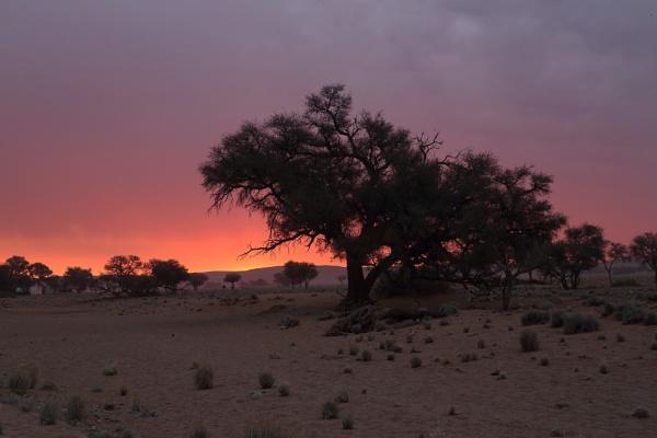 Namib Sunset by HenB