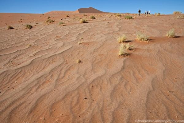 Namib Desert, Namibia Part 1 by brian17302