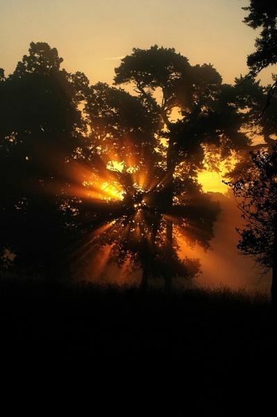 Morning by faulknerstv