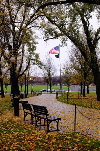 Washington Memorial by Pricegrah
