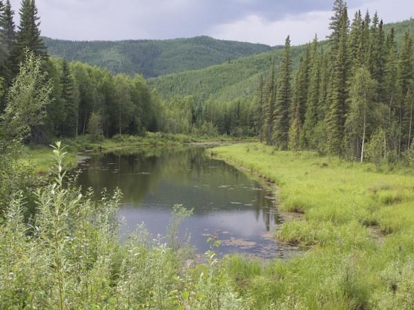 Alaska: July 2015 #19 by handlerstudio