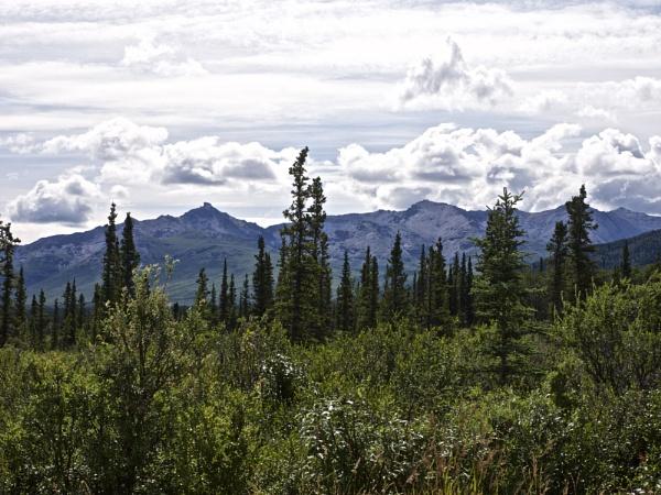 Alaska: July 2015 #21 by handlerstudio