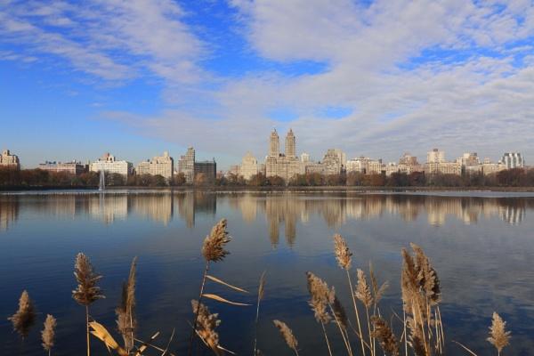 Central Park Reservoir by robjames