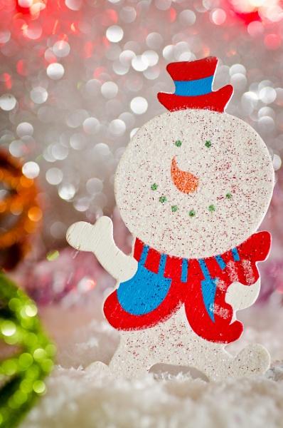 Frosty Reception by EddieAC