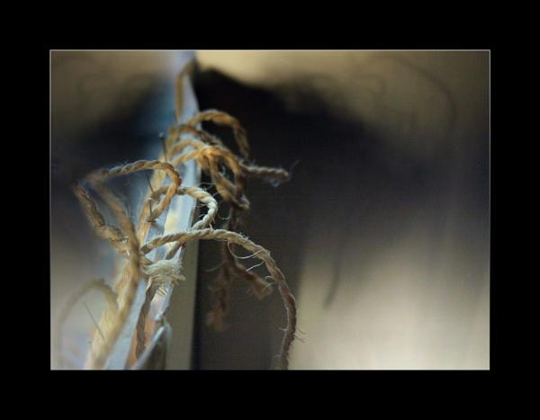 Pins and Strings by helenlinda