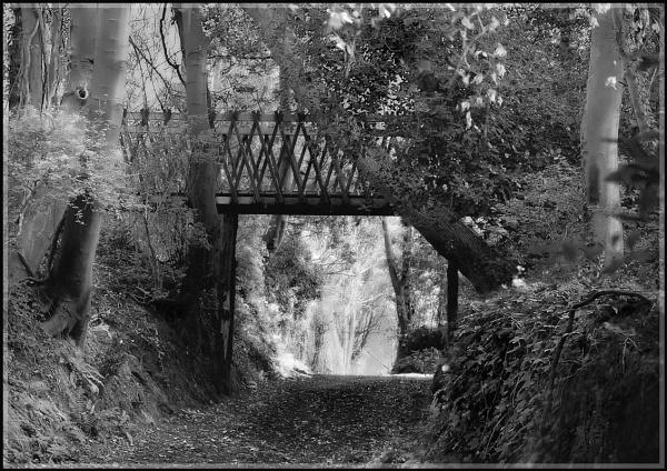 "\"" Farringford Bridge \"" by badgerwil70"
