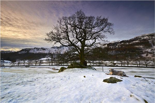 Langdale Dawn by jeanie