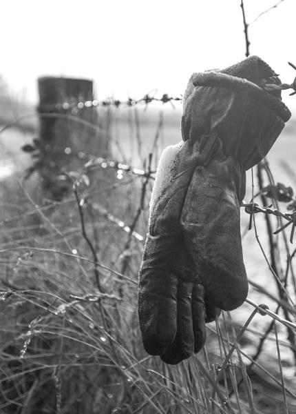 Frozen Glove by steveo12
