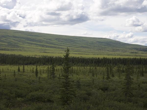Alaska: July 2015 #23 by handlerstudio