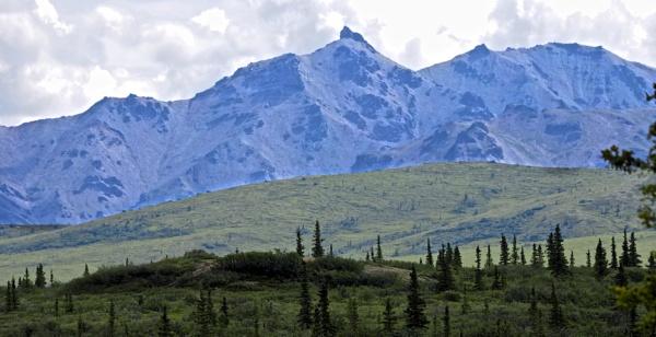Alaska: July 2015 #24 by handlerstudio