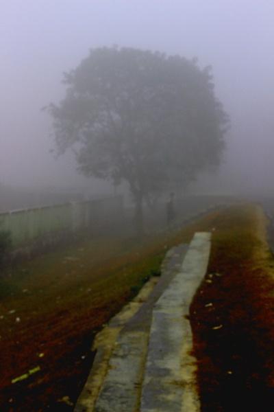 The Mist by rajibcee1