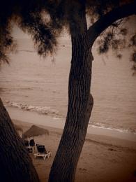 Vacant Beach