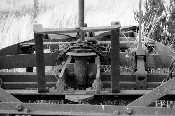 Chain Bridge Honey Farm & Vintage Museum, Northumberland. by pjohnson68