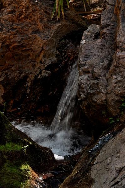 EL QUESTRO WILDERNESS PARK_ZEBEDEE SPRINGS_3 by JN_CHATELAIN_PHOTOGRAPHY