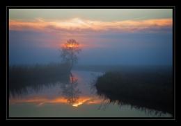 Mist & Sunset