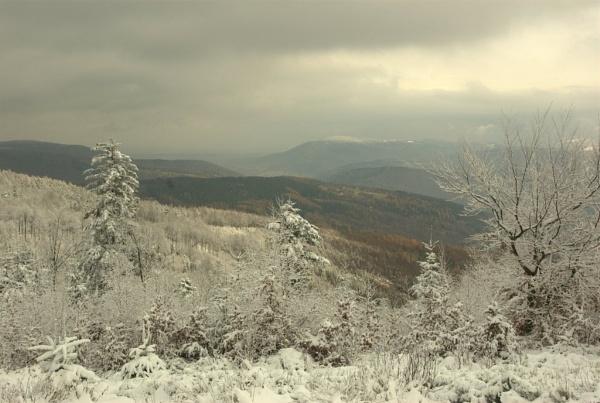 landscape by Adam_photos