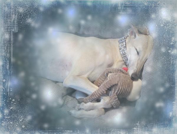 Lara\'s Christmas by cbrundage