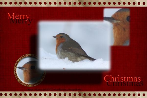 Merry Christmas by mio2mio