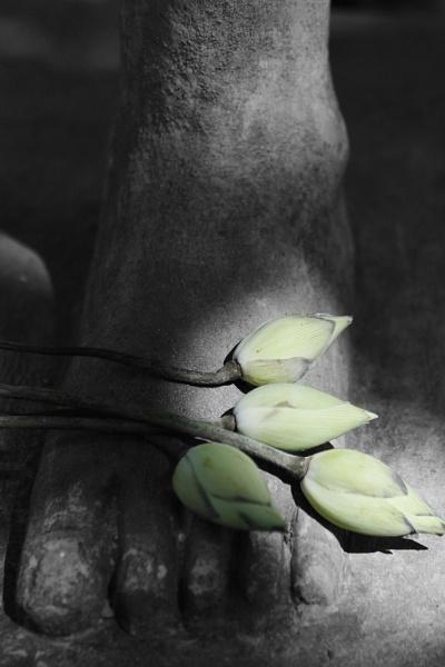 At the foot of buddha by rburnage