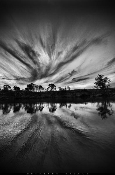 Murray Webbings by nishant101