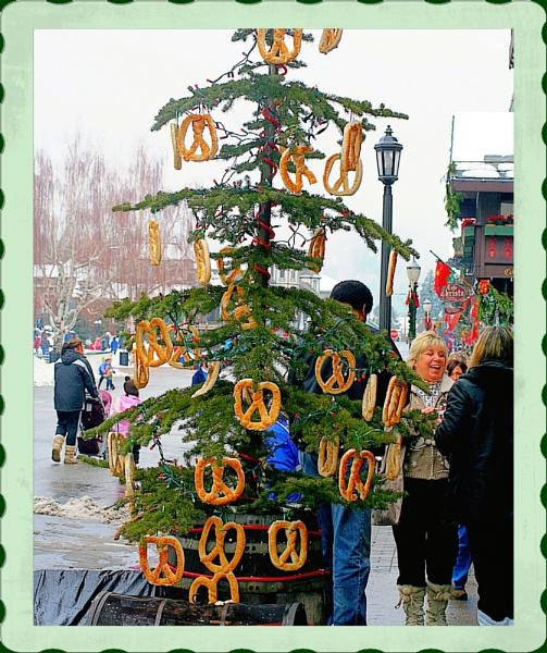 The pretzel tree by Phyllis007