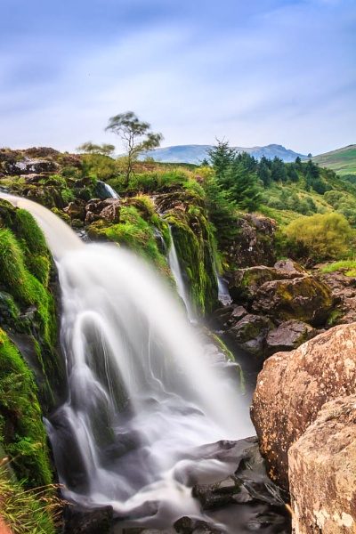 Loup of Fintry by canam