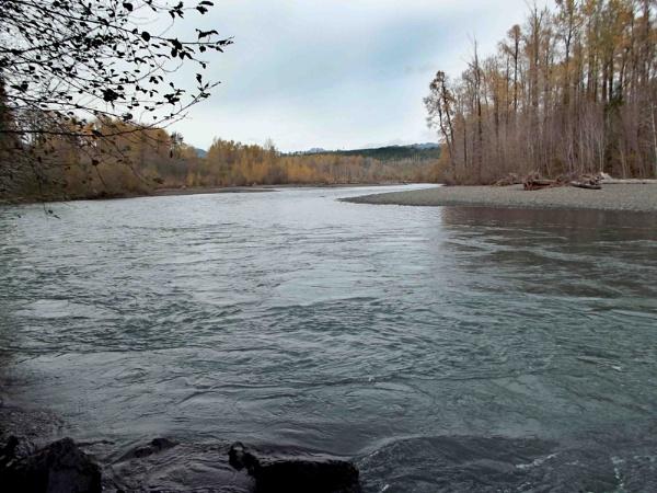 Skokomish River at Mason County, WA state