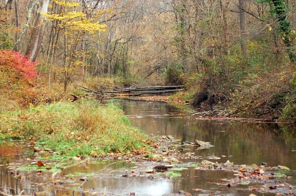 Creek by Hmccdc