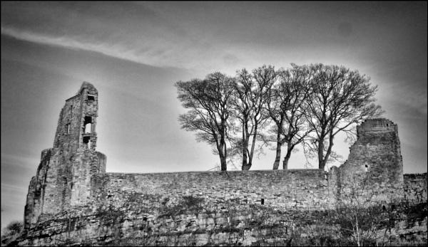 Barnard Castle and trees by stocksbridge