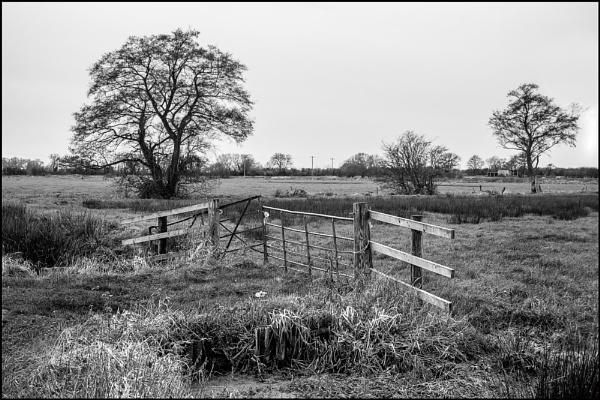 Bridge over a Rhyne by bwlchmawr