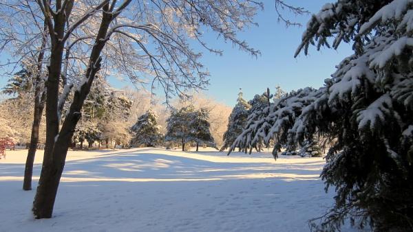 Michigan Winter by doerthe