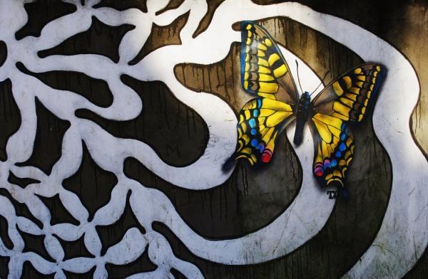 Mariposas... by Chinga
