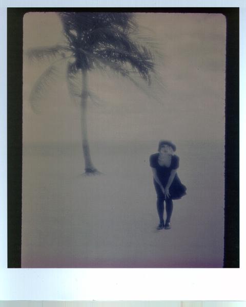 a windy beach ..... ..... ...... by Nesto