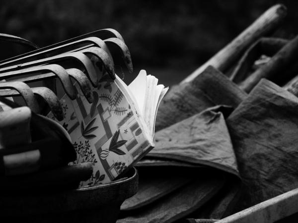 Book by dannyr