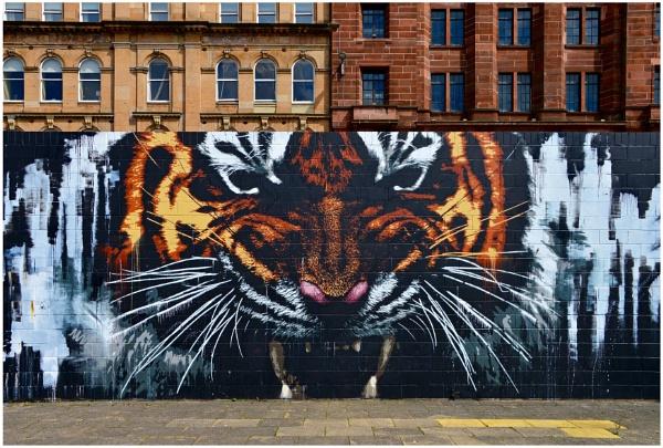 "\""Klingatron Tiger\"" by RonnieAG"