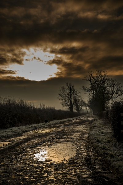 Frosted Lane by feen96