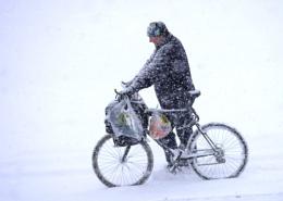 winter shopper
