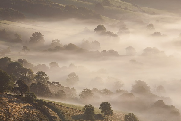 Light and Mist by martin.w
