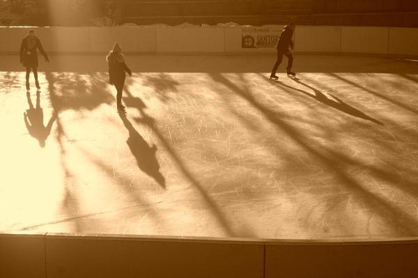 ~ Winter Skate by LexEquine