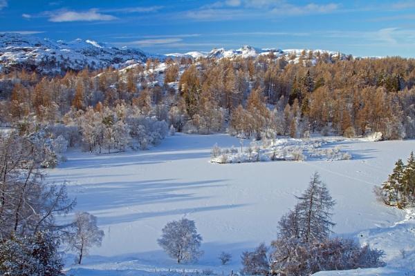 Tarn Hows Snows by georgehopkins