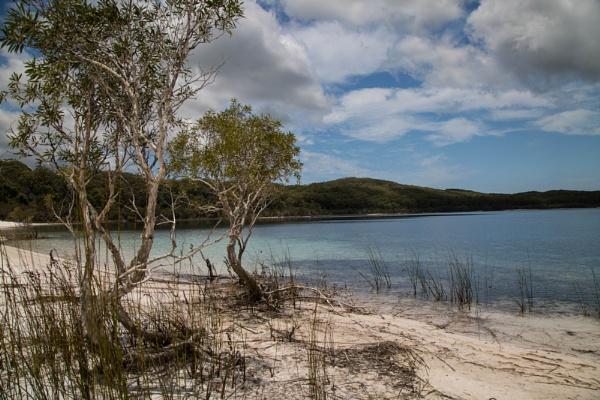 Lake McKenzie by Arjay999