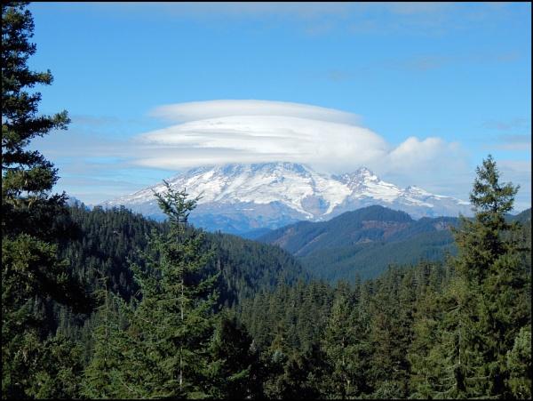 Mount Rainier, Washington by Phyllis007