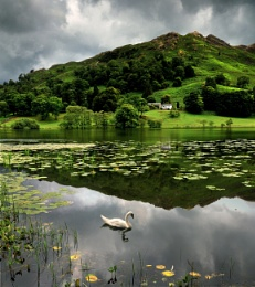 Loughrigg Tarn Lake District