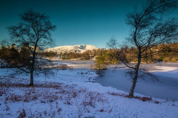 Snowy Tarn Hows by Brenty