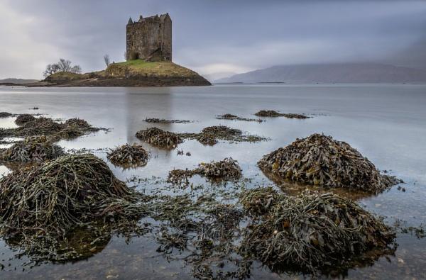 Stalking The Castle by bill33